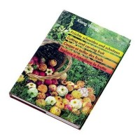 Libro iniciacion decoracion en español