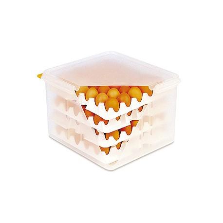 Hermetico 8 bandejas para huevos 378 impotusa for Bandejas para huevos